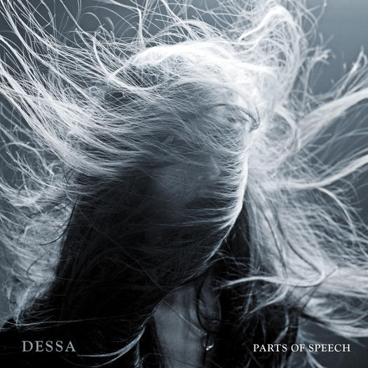 redeye-dessa-parts-of-speech-review-20130619-001